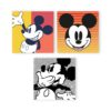 Pack 3 canvas Mickey formas